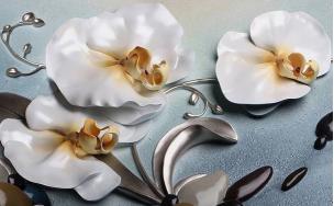 Орхидеи с камнями