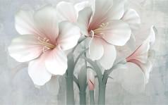 Большие нежные цветы