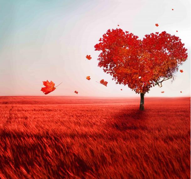 "Дерево ""Сердце"""