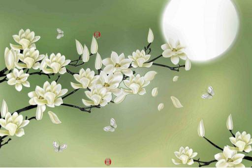 Ветви яблони