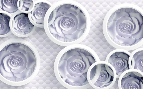 Белые розы в кругах