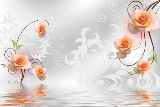 Розы и вода