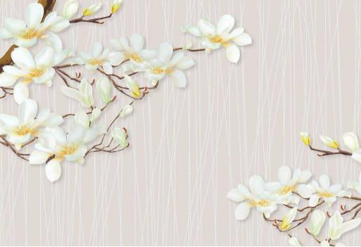 Ветви белых цветов