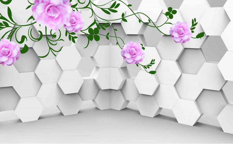 Шестигранники и розовые розы