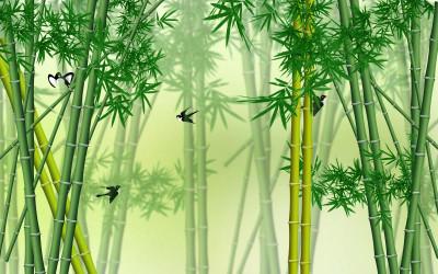 Зелёный бамбук