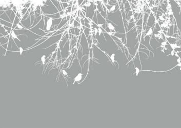 Белые ветки с птицами