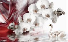 Орхидея и лебеди