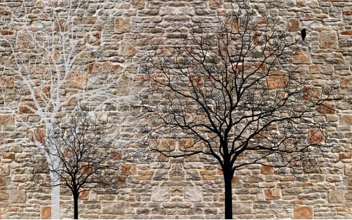 Кирпичная стена и деревья