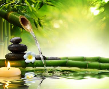 Бамбук и вода