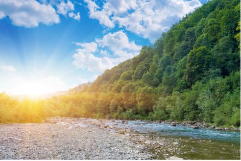 Горная река и лес